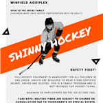 Shinny Hockey 2020