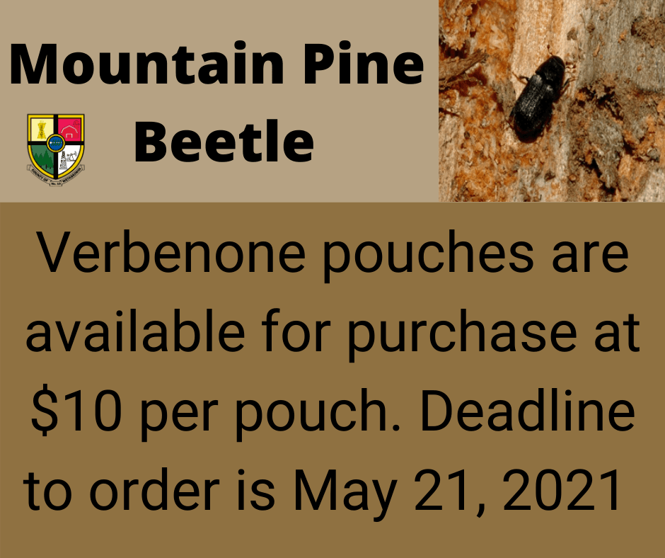 Mountain Pine Beetle Verbenone pouches